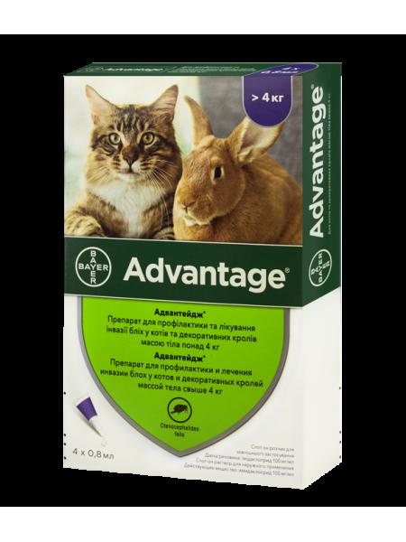Bayer Advantage 80 для кошек от 4 до 8 кг
