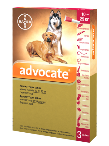 Bayer Advocate для собак весом от 10 до 25 кг