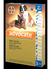 Bayer Advocate для собак весом от 25 до 40 кг