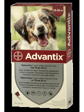 Bayer Advantix для собак весом от 10 до 25 кг