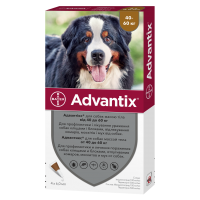 Bayer Advantix для собак весом от 40 до 60 кг