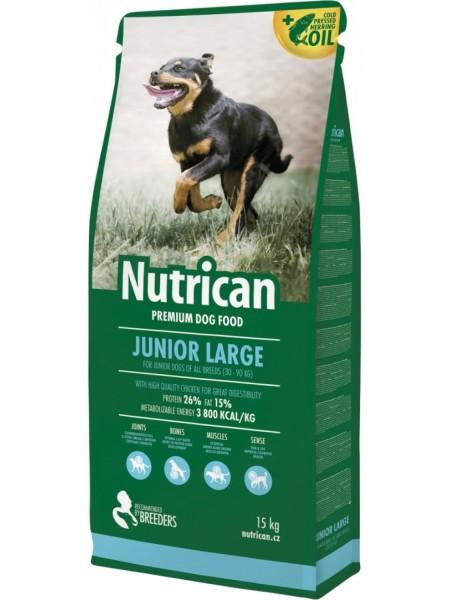 Nutrican Junior Large