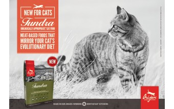 Ориджен Тундра для котов - обзор новинки
