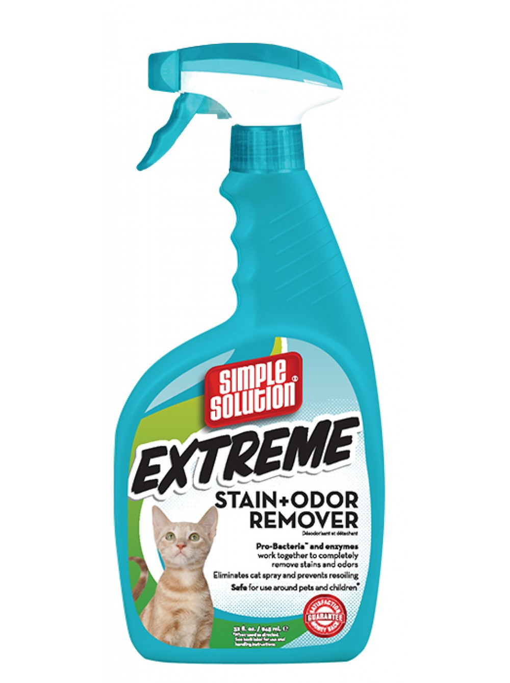 Remove cat urine smell from sofa